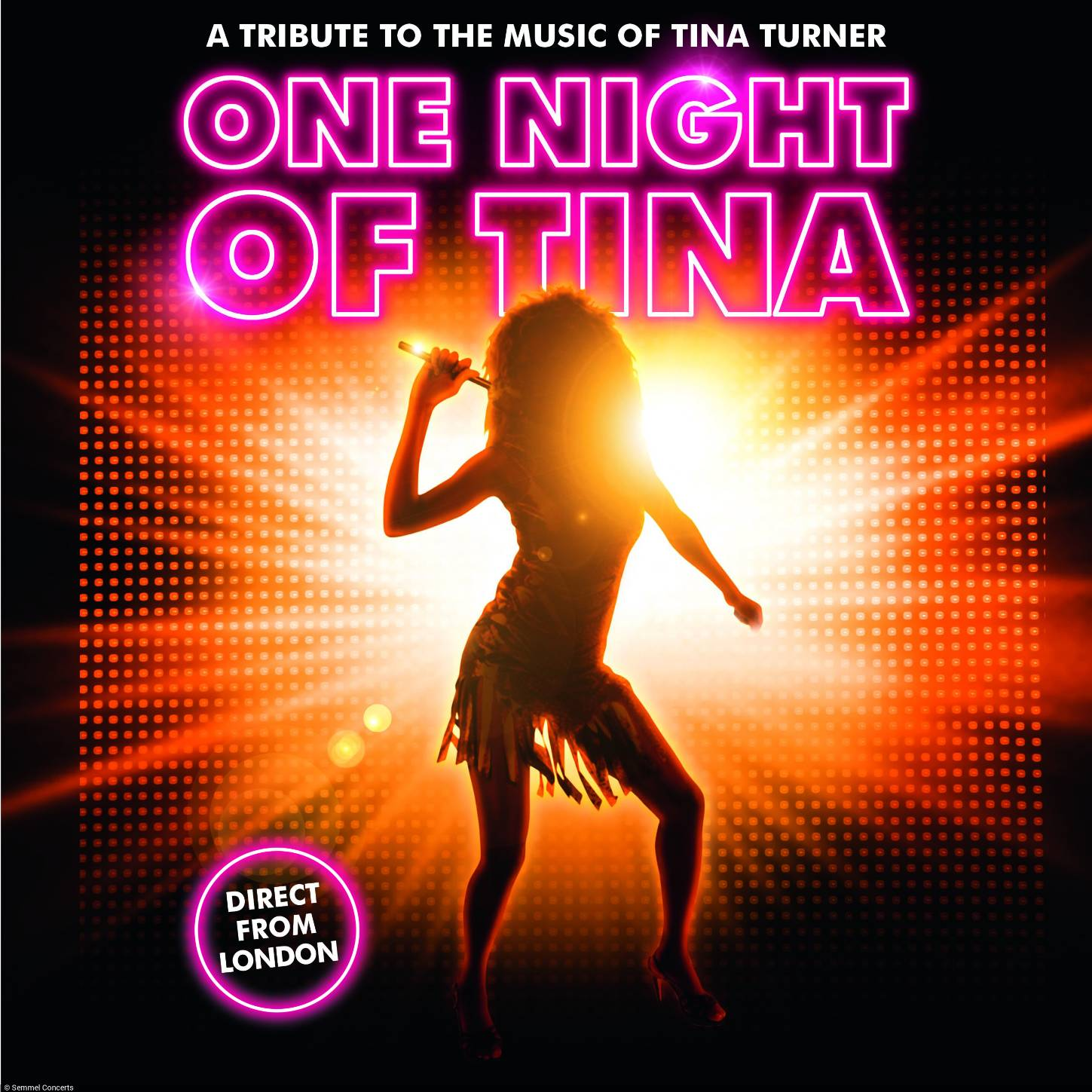 Key-Visual-One-Night-of-Tina